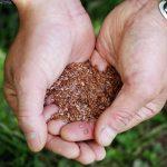 栽培から小売まで「森」としての新たな挑戦