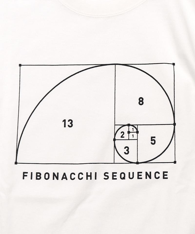 フィボナッチ数列デザイン